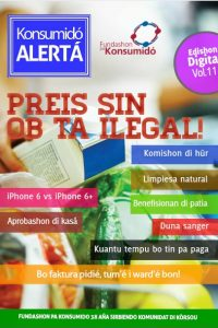 COVER nr_ 11